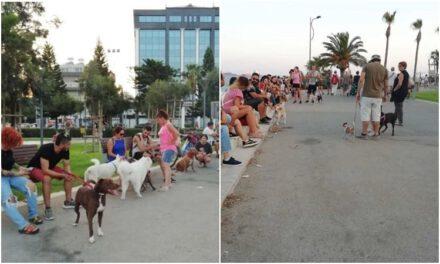 Στηρίζουμε την πρωτοβουλία της ομάδας LIMASSOL DOG OWNERS, ενάντια στην απόφαση για απαγόρευση της παρουσίας σκύλων στο Μόλο Λεμεσού.