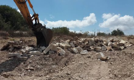 Συνεχίζεται η αποψίλωση του πρασίνου στην Πάφο