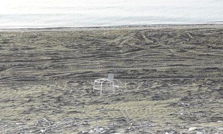 Αλώνισαν παραλία αναπαραγωγής χελωνών με τροχοφόρα