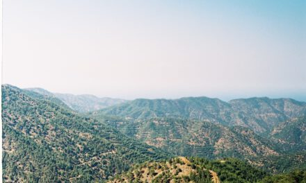 Η Διεθνής Ημέρα Βουνού μας υπενθυμίζει πόσο σημαντική είναι η φύση και η διατήρηση του περιβάλλοντος. Συνάντηση με Κώστα Χαμπιαούρη