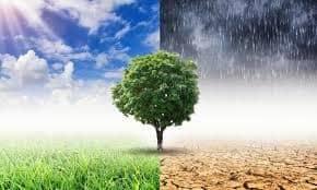 Άρθρο κ. Κυριάκου Τσιμίλλη μέλος της Κεντρικής Επιτροπής του Κινήματος με τίτλο: Eνάντια στην κλιματική αλλαγή