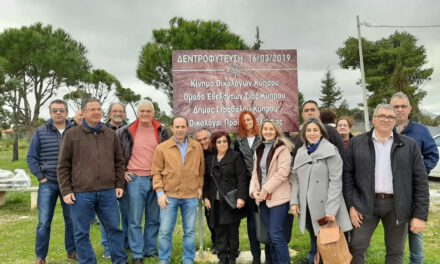 Και φέτος το Κίνημα Οικολόγων στην καμένη γη της Αττικής – τα δέντρα της Κύπρου μεγαλώνουν