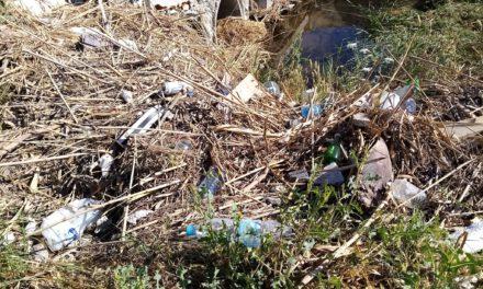 Μολυσμένα κουνούπια από σκουπίδια και λύματα στην περιοχή Αγίου Δομετίου Λευκωσίας