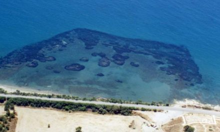 Ζητούμε να οριστεί επιστήμονας της θάλασσας για τις υποβρύχιες εργασίες στην Αμαθούντα