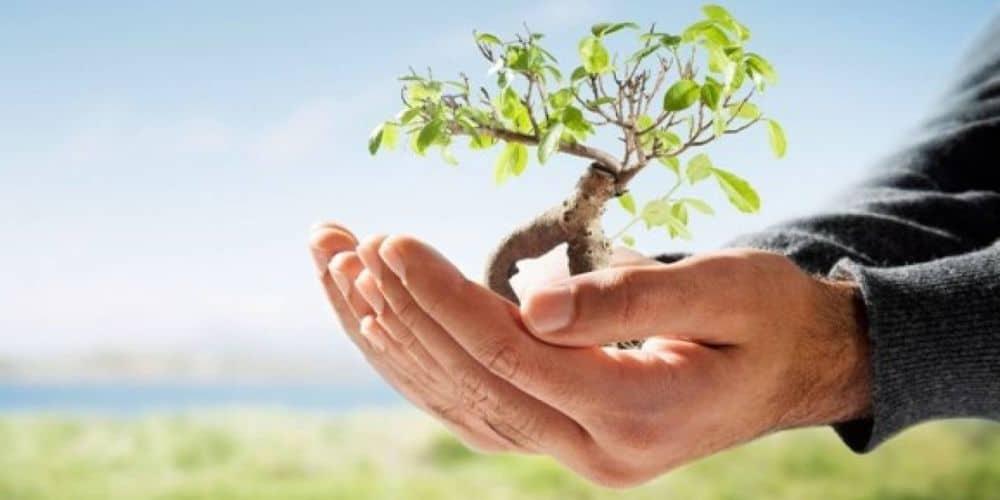 5η Ιουνίου, Παγκόσμια Μέρα Περιβάλλοντος
