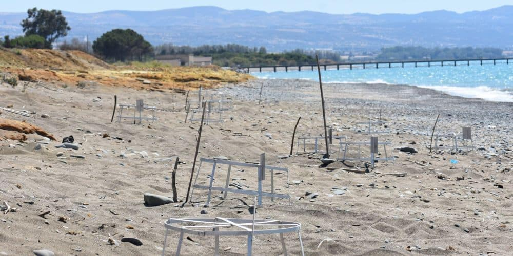 Ακόμη ένα περιβαλλοντικό έγκλημα αυτή τη φορά στοκρατικό δάσος Γιαλιάς και του δικτύου Natura 2000