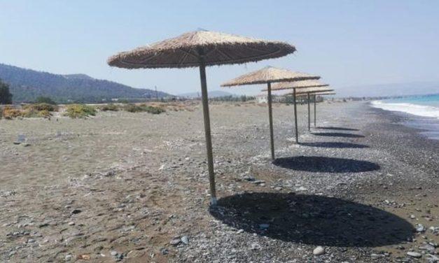 Ανησυχητική η απόφαση για οργανωμένη πλαζ σε παραλία χελωνών στη Γιαλιά