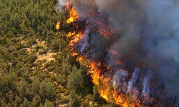 Ζητούμε να αντιμετωπιστεί άμεσα το θέμα συντονισμού και ανταπόκρισης για τις πυρκαγιές