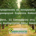 Δεντροφύτευση του Κινήματος Οικολόγων σε συνεργασία με το Προσφυγικό σωματείο Καπουτίου